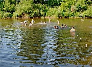 купание в реке