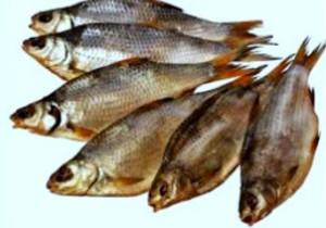 как вялить рыбу в дом усл3