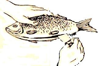 как разделать  рыбу  в дом усл  (3)