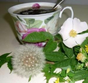 заваривать чай с травами