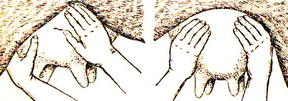 доение массаж вымени