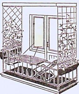 озеленение балконов11 (1)