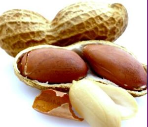 арахисс польза и вред