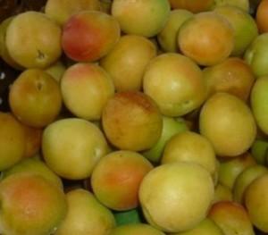 варенье абрикосовое (2)
