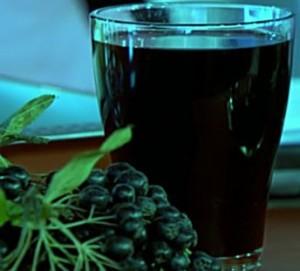 вино из рябины (1)