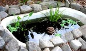 как сделать пруд из ванны