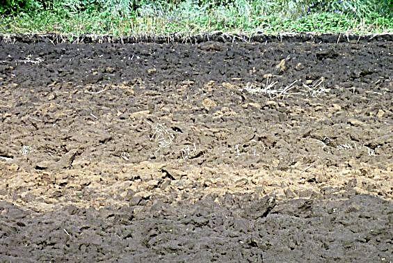 Как сделать почву более рыхлой для цветов