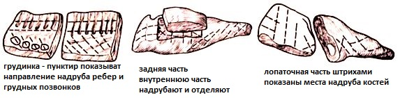 %d0%ba%d0%b0%d0%ba-%d0%bf%d1%80%d0%b8%d0%b3-%d1%81%d0%be%d0%bb%d0%be%d0%bd%d0%b8%d0%bd%d1%831