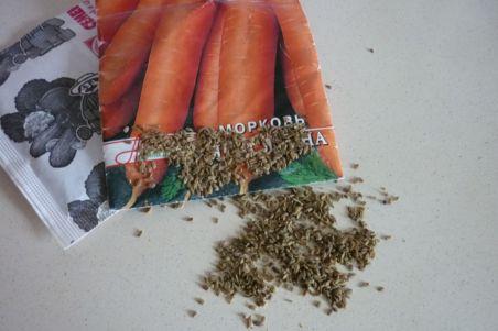провер семян на всхожесть (3)