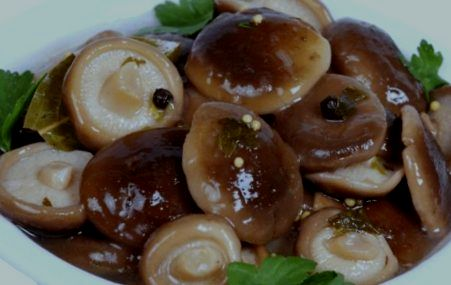 солить грибы4