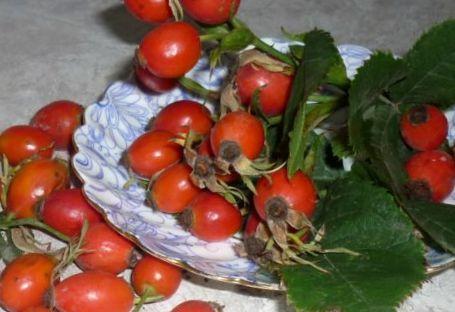 ягоды шиповника (1)