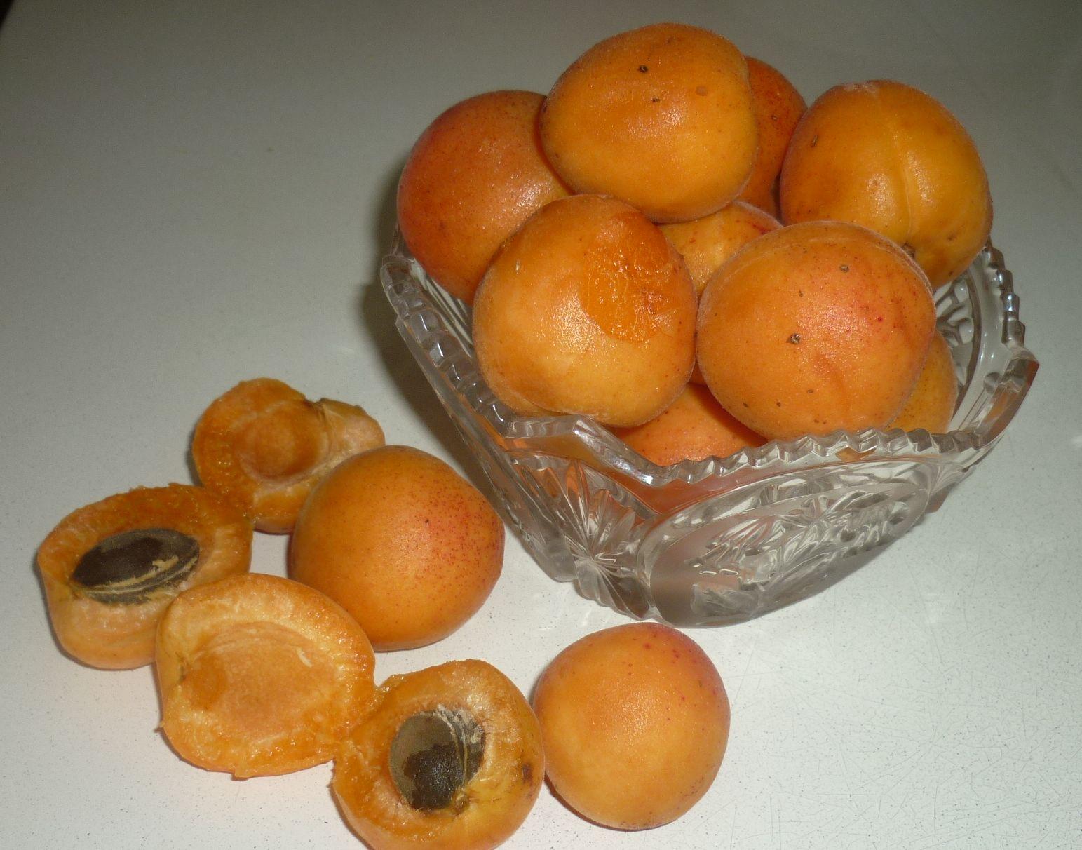 абрикосы плоды и косточки (5)